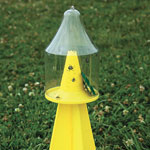 Ambush Stink Bug Trap
