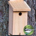 Backyard Basics™ Chickadee Nest Box