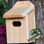 Backyard Basics™ Swallow Nest Box
