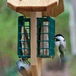 Double Suet Cake Feeder