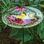 Finches & Coneflowers Glass Birdbath