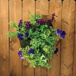 Grow Tub Wall Flower Bag