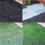 Turf Alive!® III With Rhizomes Lawn Mat