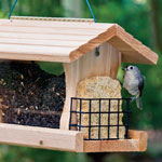 All-in-One Deluxe Feeder