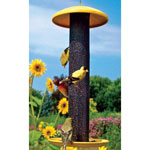 Nyjer Gold Finch Feeder
