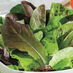 Organic Tri-Colored Romaine Lettuce Blend