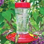 Mini Hummingbird Feeder