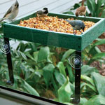 Deluxe Window Platform Feeder