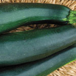 Container Easypick Green Squash