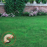 grubHALT!™ Bt for Lawn Pests Use on both turf and ornamentals.