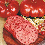 Organic Arkansas Traveler Tomato