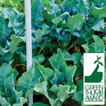 Perfect Balance™ Custom Fertilizer  for Vegetable Gardens
