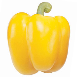 Organic Abay Sweet Pepper
