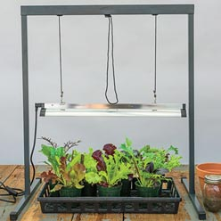 Seed Starting Grow Light