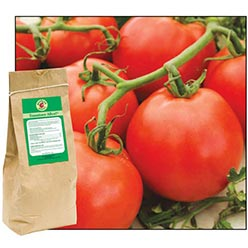 Tomatoes Alive!® Plus 100% All-Natural Fertilizer